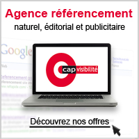 Agence referencement Val de Marne 94 et Essonne 91